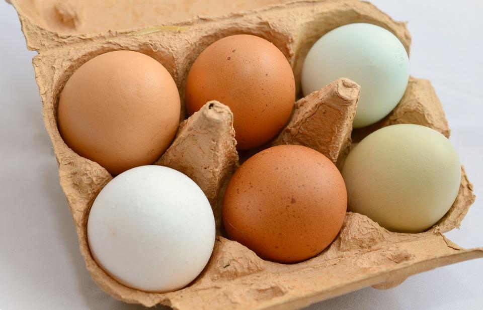 dlaczego warto jeść jaja