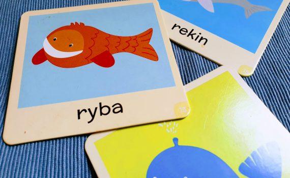 ryby w diecie małego dziecka